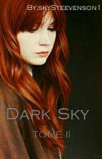 Dark Sky Tome II by skySteevenson1