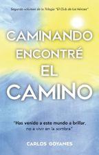 Caminando, Encontré el Camino by CarlosGoyanes
