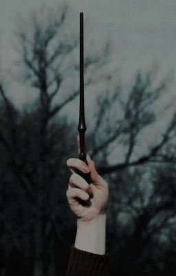Đọc truyện Wizards's house   wizarding_stories