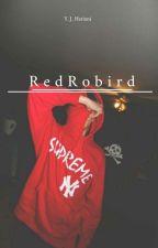 RedRobird   Tim Drake by yjhariani