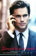 Bienvenida a mi Mundo-Christian Grey & tu (Editando) by -Darcy-stylinson