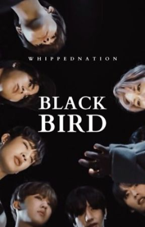𝐁𝐋𝐀𝐂𝐊𝐁𝐈𝐑𝐃 ‣ stray kids by whippednation