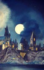 A Wizarding World [HP Fanfic][Updating] by ZhinJun