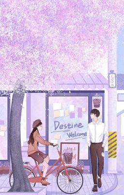Đọc truyện |Obanai x Mitsuri| Gió Ấm Không Bằng Anh Thâm Tình