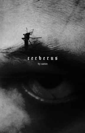 ⠀ ⠀cerberus,⠀original. by perseius