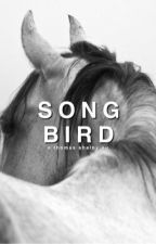 songbird | tommy shelby  by velvetfatale