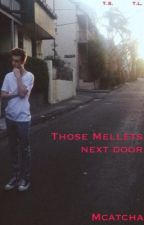 Those Mellets Next Door (Troye Sivan and Tyde Levi) by Mcatcha