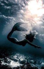 Six Feet Under [Joshler] by ladytyler