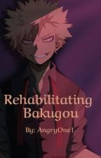 Rehabilitating Bakugou (Abused/Depressed/Villain Bakugou) by AngryOne1
