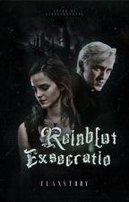 Der Fluch ~Dramione by MrsElaMalfoy