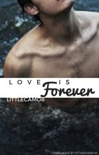 Love Is Forever (Hiccup x reader one-shots) by Littlecamo8