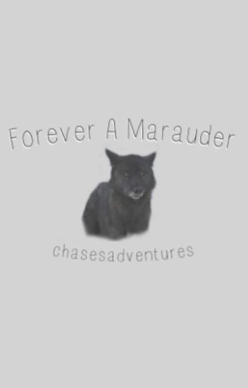 Forever A Marauder