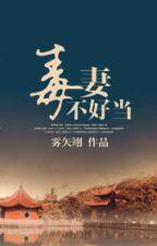 Độc Thê Không Dễ Làm - Xuyên Không - Hoàn by ga3by1102
