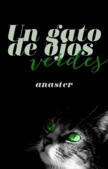 Un gato de ojos verdes ✔