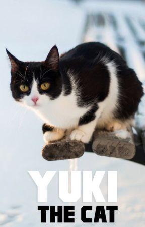 Yuki the Cat by NicholasQuill