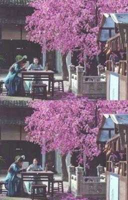 Cẩm Y Chi Hạ (ngoại truyện): Bình Yên