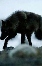 Max The Werewolf! by Henlo777