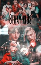 stray kids one shot by chio__nee