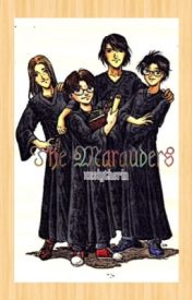 The Marauders by sarcastic-_-