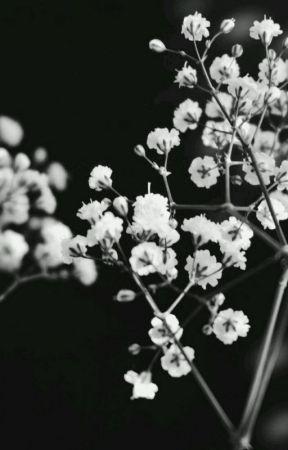 𝕋𝕙𝕖 𝕃𝕚𝕘𝕙𝕥 𝕚𝕟 𝕥𝕙𝕖 𝔻𝕒𝕣𝕜𝕟𝕖𝕤𝕤 𝕀𝕀 𝕂ℕ𝕐 •𝔽𝕒𝕟𝕗𝕚𝕔𝕥𝕚𝕠𝕟 by Asymmetrical_Kid