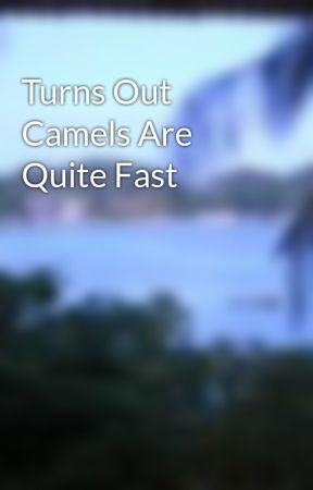 Turns Out Camels Are Quite Fast by shwego