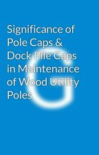 Significance of Pole Caps & Dock Pile Caps in Maintenance of Wood Utility Poles by galathermoseo