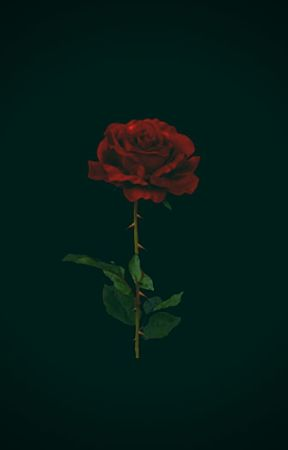 OF ROSES AND THORNS by ROSESCOMEDOWN