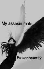 My assassin mate by frozenheart32