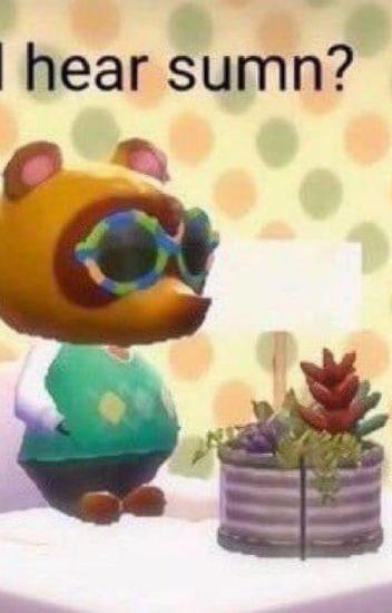 Animal Crossing Memes Vanilla Dreams Wattpad