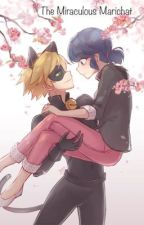 The Miraculous Marichat by hpluvrsec311