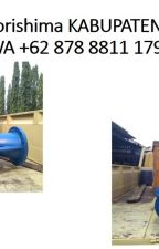 WA +62 878 8811 1796 Distributor Showfou Pumps KOTA TASIKMALAYA by showfoupumps