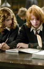 HARRY POTTER COMPLETED The Curious Incident of What Happened that Day by GryffindorHermione