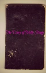 The Diary of Molly Rouge by skinnymolly1