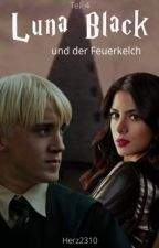 Harry Potter 4 / FF by Herz2310