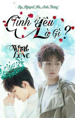 Đọc truyện [Fanfic][ Khải Nguyên ] What Is Love _ Tình Yêu Là Gì ?