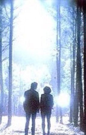 The Vampire Diaries : Season 6 - Episode 1 : Part 3 - Wattpad
