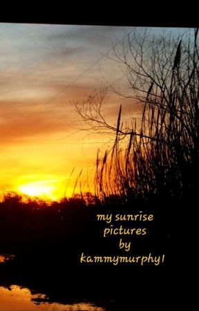 My sunrise pictures. by kammymurphy1