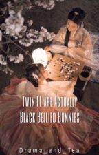 Transmigration: Twin Female Lead are Actually Black-Bellied Bunnies by Drama_and_Tea