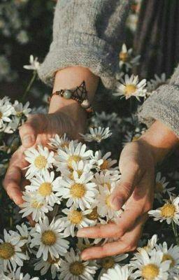 [KidLaw] Lẵng hoa