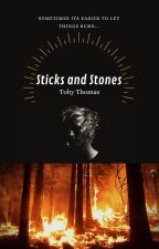 Sticks and Stones by tobyt1214