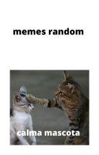 memes pendejos by gatito_galletita