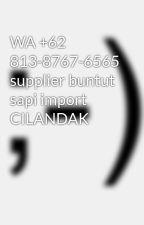WA +62 813-8767-6565 supplier buntut sapi import CILANDAK by PositiveRepublik