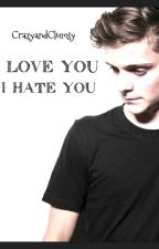 I love you/I hate you Martin Garrix y tu by CrazyandClumsy
