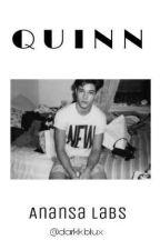 Quinn by darkkblux