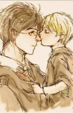Feliz aniversario Drarry (one shot Lemmon) by Dania131