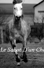 Sous le sabot d'un cheval by NinaFerhat