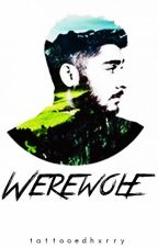 Werewolf ✘ z.m. by tattooedhxrry