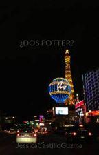 ¿DOS POTTER? by JessicaCastilloGuzma