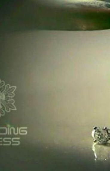 WEDDING DRESS ! (HIATUS) by QueenLovesYou
