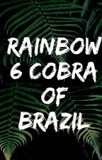 Rainbow six: Cobra of Brazil by War_Historian45